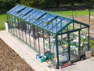 Spring Clean your Greenhouse
