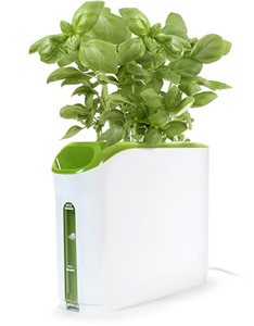 Gadget of the week: Power Plant growing machine