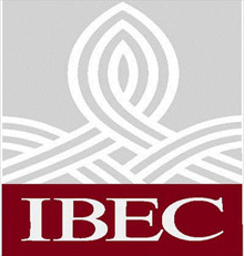 IBEC calls for tax incentives and grants for homeowners looking to renovate