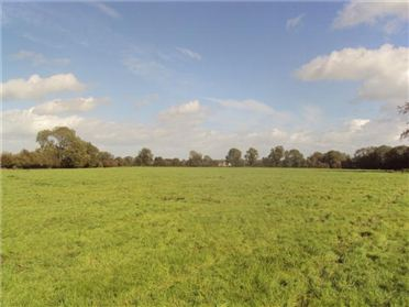 Enfield farm to go under the hammer