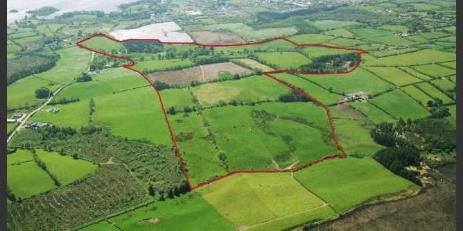 Cavan estate fails to sell at auction