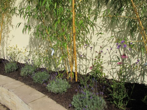 New garden landscaping – planting phase