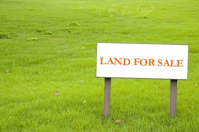 Land sales in first half of the year outperform 2011
