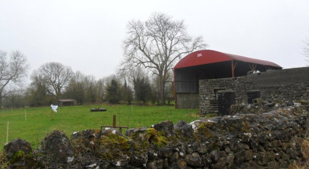 Land to be auctioned off in Ballinasloe