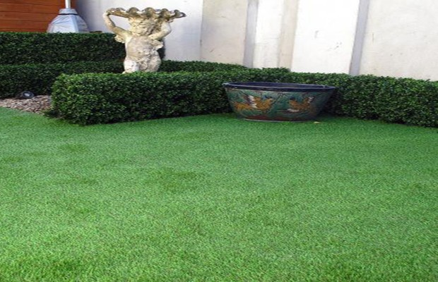 No maintenance garden design solutions