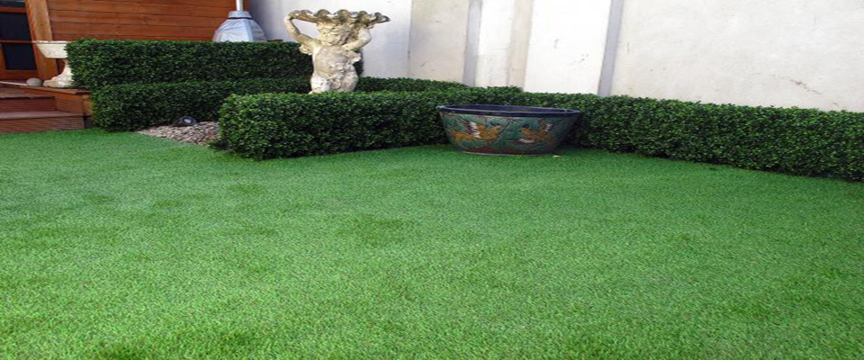 No maintenance garden design solutions for Garden design solutions