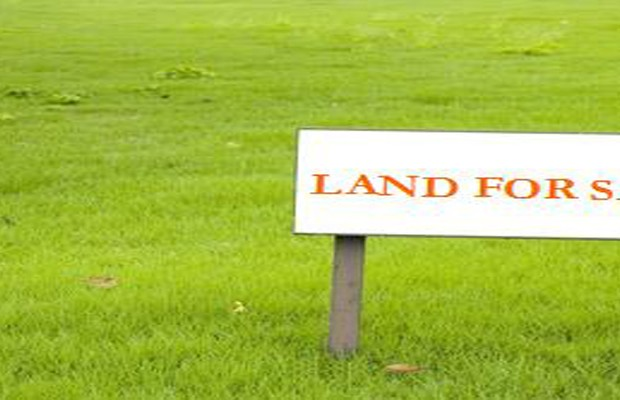 Land prices rose 5.2% last year