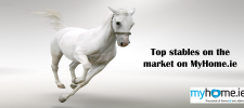 A stable market: Some of the finest stables for sale right now