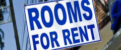 Homeowners encouraged to rent a room to students to ease accommodation crisis